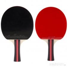 Ракетка для игры в пинг-понг PPR-A